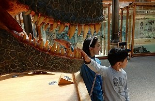 Nov  2, Paleontology and dinosaurs for kids: Tips for getting children hooked on science