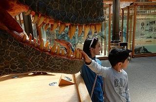 Dec  6, Dinosaur replay: Getting kids hooked on science